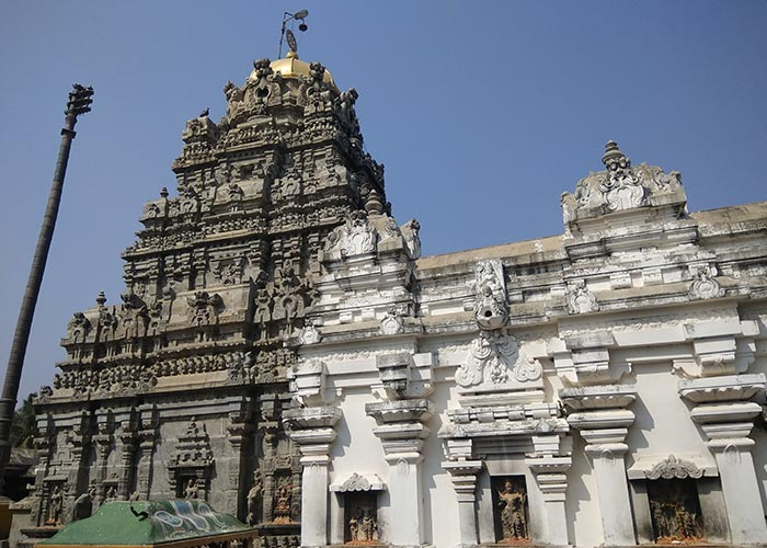 sri kurmanatha swamy temple
